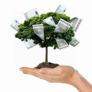 Die verschiedenen Arten von Investmentfonds